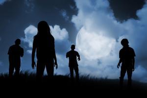 Adult Night Terrors